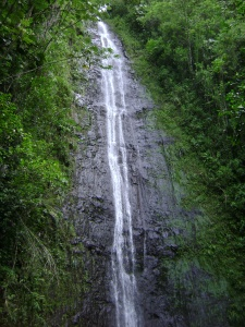 People hike a mile into the jungle to see Manoa Falls.  In my opinion, it's just as fun watching water fall from your hotel balcony.